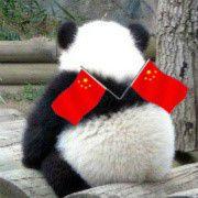 为什么百度贴吧那么多熊猫烧香拜佛头像?为什么那么多像一只灰色老鼠头像草原平头哥蜜獾头像?