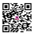 电视剧《三十而已》免费在线观看全集地址